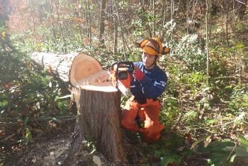 5年目の演習林活用プロジェクトに向けて